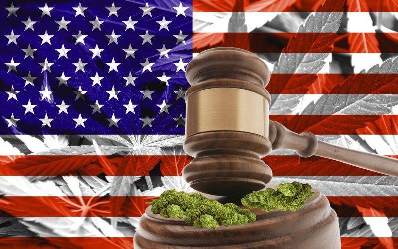 Kannabis%20tuomiolla